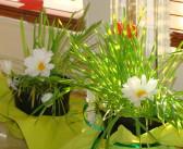 Wielkanoc – dekoracja z owsa