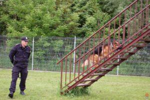 policjant_i_pies